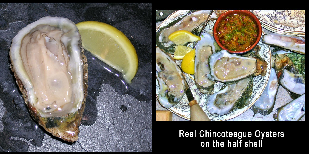 Chinco Oysters